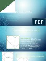 Exposicion Calculo Vectorial