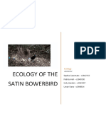 ecology-of-the-satin-bowerbird-final