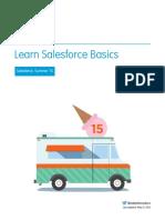 Basics sales force