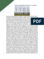 Los Hidrocarburos y Gas Natural en Bolivia y El Mundo