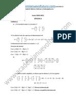 Examen Matematicas II Selectividad Madrid Junio 2011 Solucion