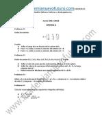 Examen Matematicas II Selectividad Madrid Junio 2012 Enunciado (1)