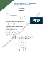 Examen Matematicas II Selectividad Madrid Junio 2012 Solucion