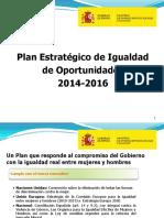 Plan Estrategico Igualdad 2014-2016