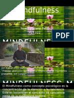 Presentation Mindfullness.pptx