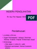 Indera Penglihatan PSPD 230108