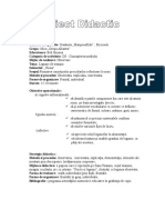 Proiect Didactic DS - Rosia
