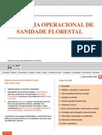 Programa Nacional de Sanidade Florestal