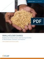 Financial Diaries with Smallholder Families