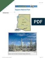 ecoscenario saguaronp