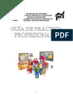 Guia de La Practica Profesional II 2009