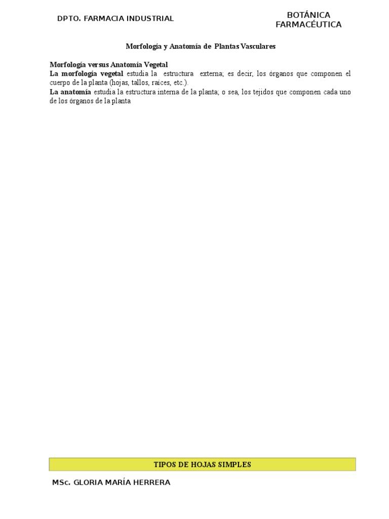 Botanica Farmaceutica Iii Unidad Hoja Morfología Vegetal