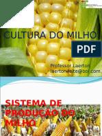 Cultura Do Milho Aula