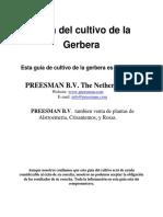 Cultivo de Gerbera1