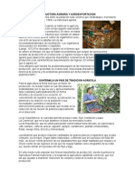 Estructura Agraria y Agroexportacion
