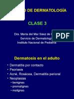 1. Dermatitis.pps