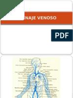 Unidad 1 Generalidades Del Sistema Digestivo