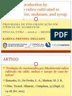 Produção de carotenóides por Rhodotorula rubra em cana-de-açúcar