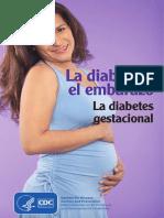 Diabetes and Pregnancy_spfinal