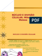 divisao_mitotica_meiotica.pps