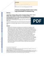 Pig Lumbar Spine Anatomy and Imaging Guided Lateral Lumbar Puncture - A New Large Animal Model for Intrathecal Drug Delivery (2013)