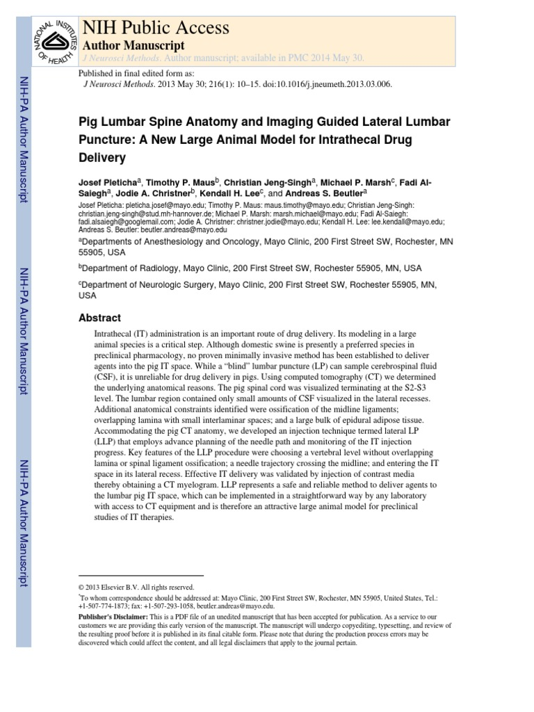 Pig Lumbar Spine Anatomy And Imaging Guided Lateral Lumbar Puncture