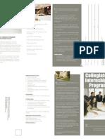 Collegiate Internship Program brochure