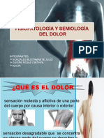 Semiología y patología del dolor