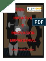 INICIATIVA_EMPRESARIAL.pdf