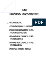 Agora - Lobulo Frontal y Funciones Ejecutivas