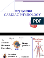 11. Circulatory System