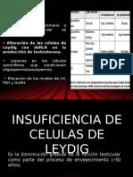 Insuficiencia Celulas de Leydig