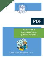 EVIDENCIA3_CALVA VERDE_MARÍA JOSÉ.docx