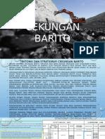 Cekungan Barito PPT