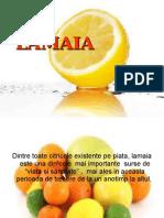 Lamaia-beneficii