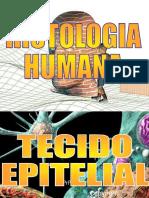HISTOLOGIA HUMANA.ppt