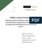 Practica Profesional II Patricio Avila