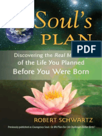 A Your Soul's Plan Book Excerpt