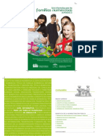 Guia Informativa Familias Numerosas