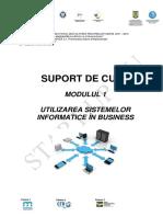 Utilizarea Sistemelor Informatice in Business