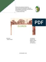 Informe Elorza