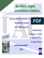 1 aula esalq origem historia dados economicos botanica atual.pdf