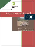 Plasticidad-practica (5 y 6)