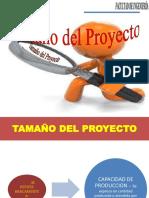 Tamaño-del-proyecto.pdf