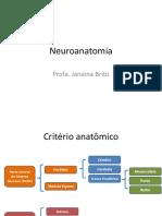 Neuroanatomia - Aula 5