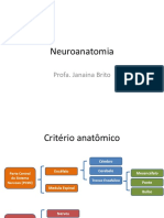 Neuroanatomia - Aula 6