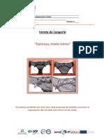 Modelo de Documentação - Apresentação Trabalhos Dos Formandos 17.01.2012