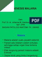 Patogenesis Malaria (Kuliah Syst. Peny. Tropis)