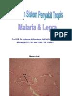 Present. Praktikum Sis. Peny. Tropis (Lepra&Malaria)