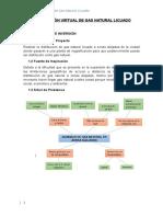 Distribución Virtual de Gas Natural Licuado Informe